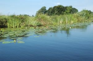 Waterkant Friesland